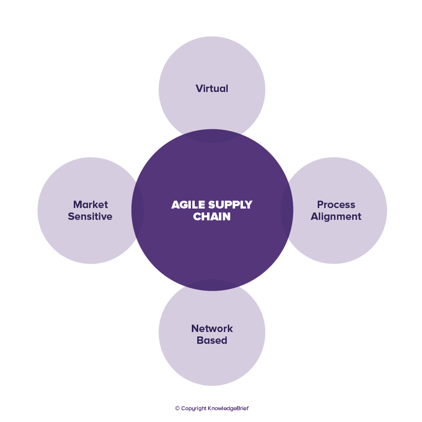 Agile Supply - What is it? Definition, Examples and More