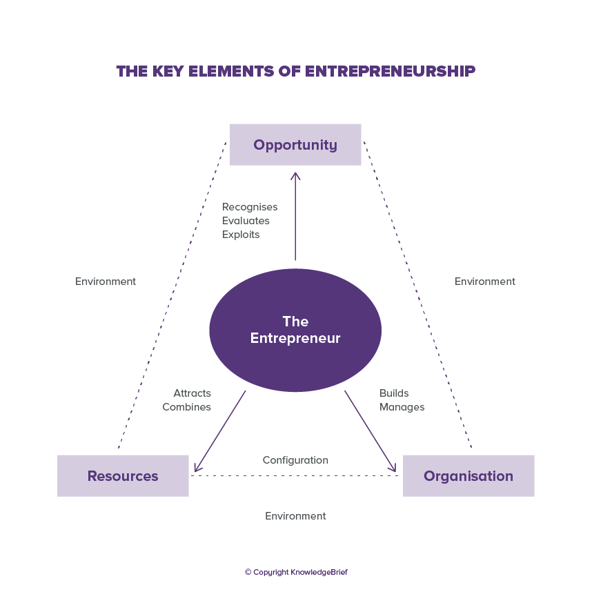 Entrepreneurship What Is It Definition Examples And More