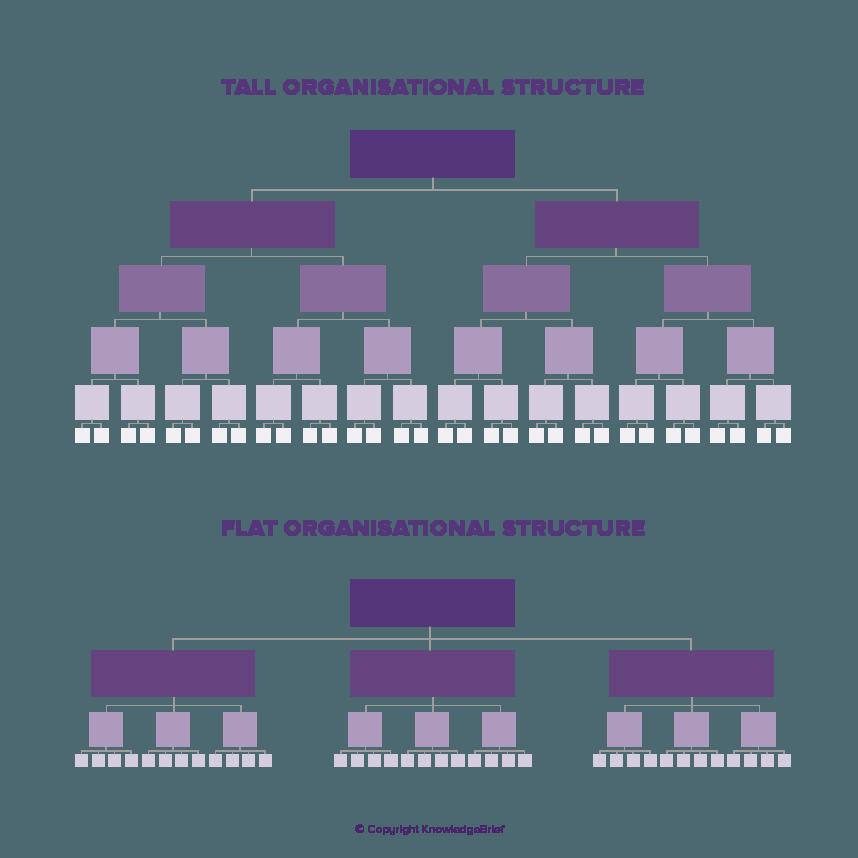 Flat / Horizontal Organisation