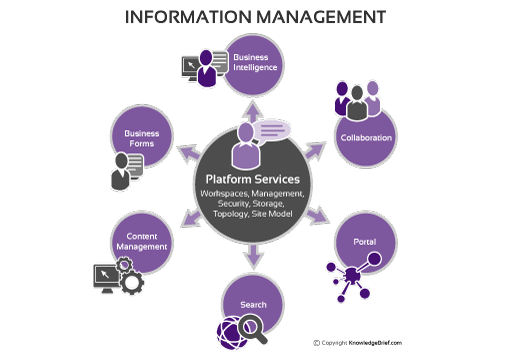definition of an it manager Understanding the role and scope of the senior manager an expansion of the typical manager's role talk like a pro: dictionary of business management terms.