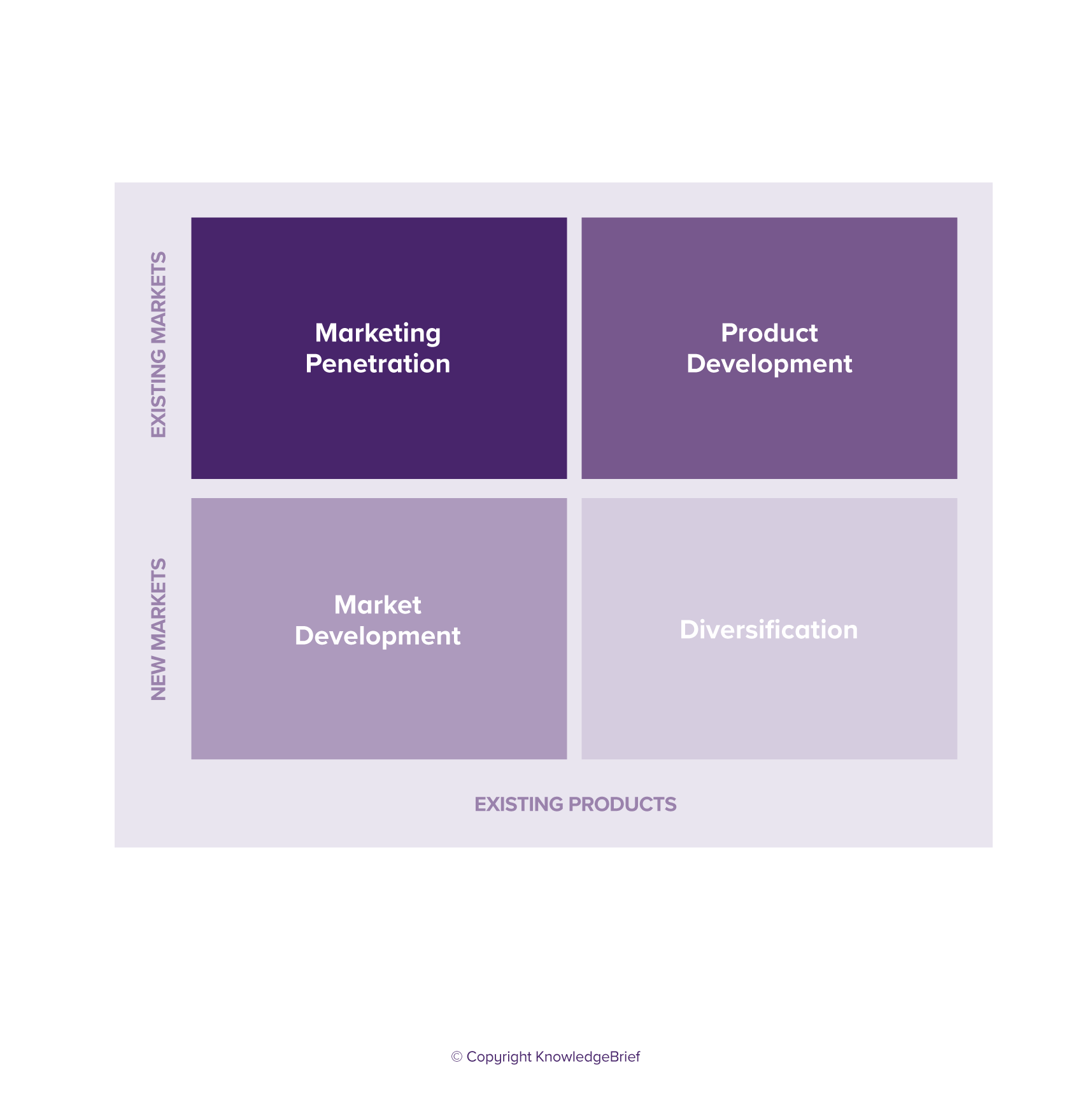 Operations Strategy Matrix